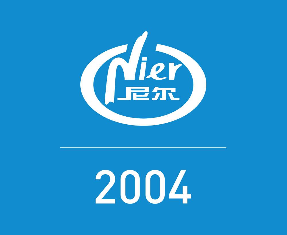 2004年发展史